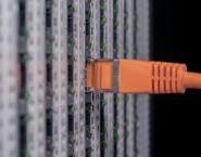 Imagen de un cable Ethernet conectado a un switch
